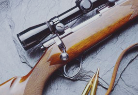 Armes à feu Non-Restreintes